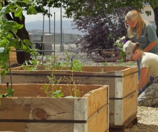 Featured Project: 152nd Airlift Wing's Community Garden